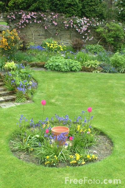 Picture of English Country Garden - Free Pictures - FreeFoto.com