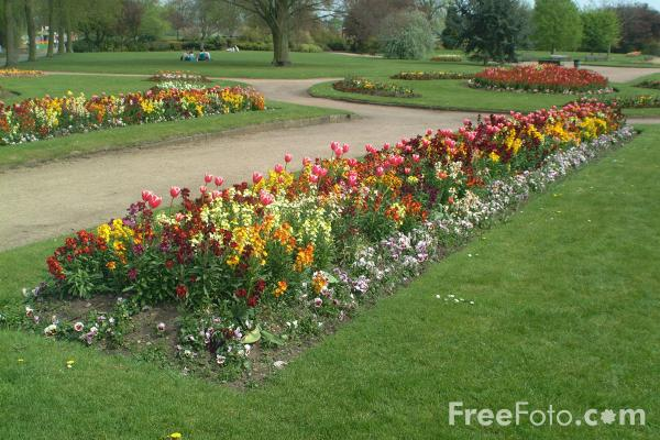 Picture of Flower Border in a Public Park - Free Pictures - FreeFoto.com