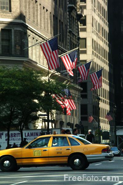Picture of New York City Taxi Cabs - Free Pictures - FreeFoto.com