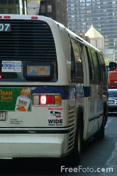 Picture of New York Transit Bus, New York City - Free Pictures - FreeFoto.com
