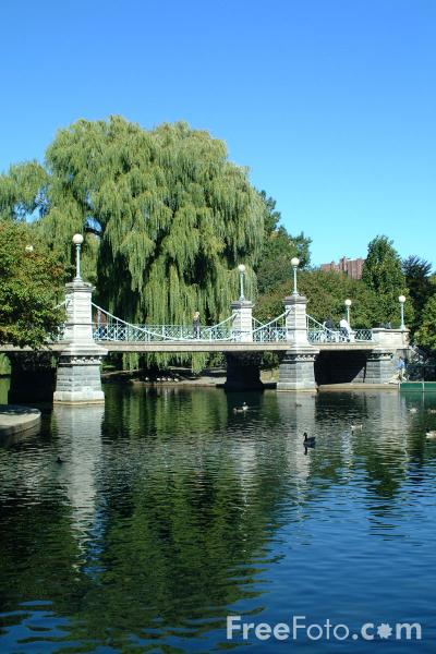 Picture of The Brooklyn Bridge, Boston Public Garden, Boston, Massachusetts - Free Pictures - FreeFoto.com