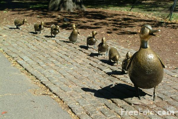 Picture of Make Way for Ducklings Sculpture, Boston Public Garden, Boston, Massachusetts - Free Pictures - FreeFoto.com