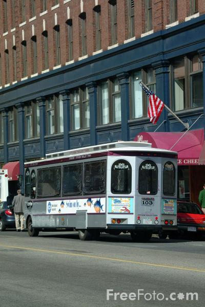 Picture of Tourist Trolley Bus, Boston, Massachusetts - Free Pictures - FreeFoto.com