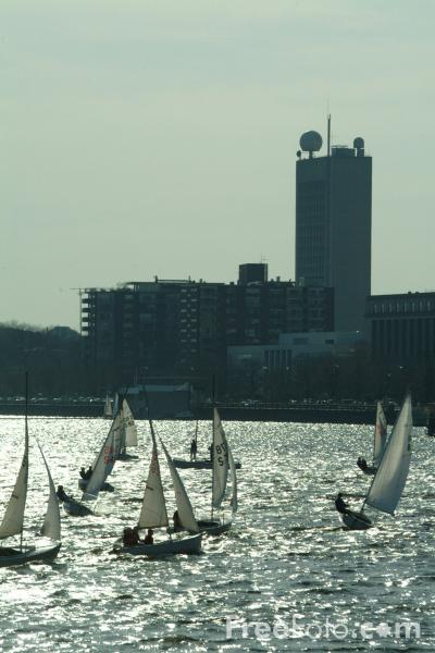 Picture of Sailing, Charles River, Boston, Massachusetts, USA - Free Pictures - FreeFoto.com
