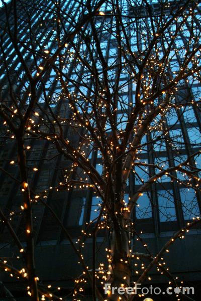 Picture of Christmas Lights, Boston, Massachusetts - Free Pictures - FreeFoto.com