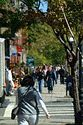 Newbury Street, Boston, Massachusetts has been viewed 11164 times