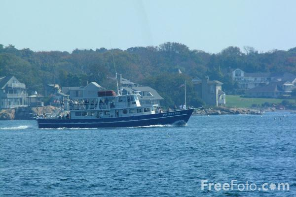 Picture of Whale Watching Boat, Gloucester, Massachusetts - Free Pictures - FreeFoto.com