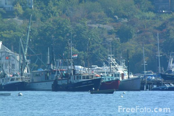 Picture of Fishing Boats. Gloucester Harbor, Massachusetts - Free Pictures - FreeFoto.com