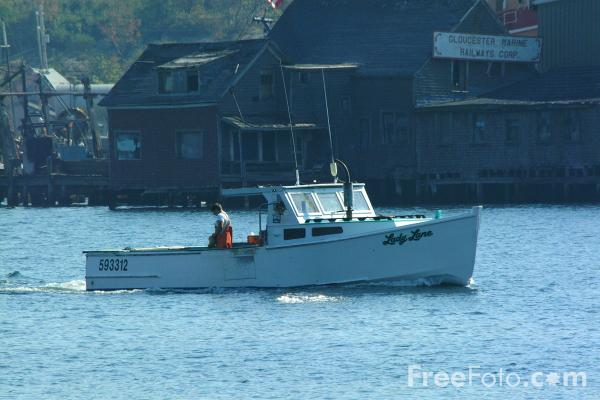 Picture of Gloucester Harbor, Massachusetts - Free Pictures - FreeFoto.com