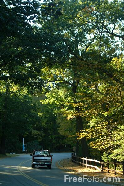Picture of Country Road, Route 126, Walden Pond, Massachusetts - Free Pictures - FreeFoto.com