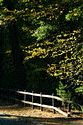 Image Ref: 1212-05-73 - Fall Color, Walden Pond, Massachusetts, Viewed 5651 times