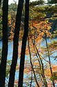 Image Ref: 1212-05-75 - Walden Pond, Massachusetts, Viewed 5535 times