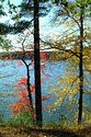 Image Ref: 1212-05-87 - Walden Pond, Massachusetts, Viewed 5842 times