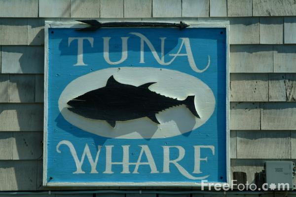 Picture of Tuna Wharf, Rockport, Massachusetts, USA - Free Pictures - FreeFoto.com