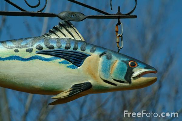 Picture of Painted Fish Sign, Gloucester, Massachusetts, USA - Free Pictures - FreeFoto.com
