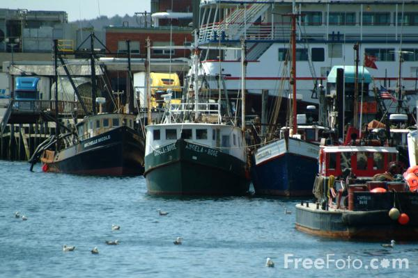 Picture of Fishing Boats, Gloucester, Massachusetts, USA - Free Pictures - FreeFoto.com