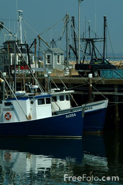 Fishing boats plymouth harbor massachusetts pictures for Mass commercial fishing license