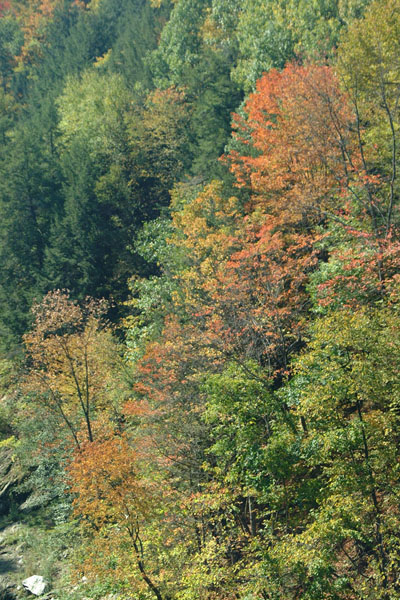 Picture of Quechee Gorge, Vermont - Free Pictures - FreeFoto.com