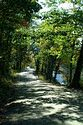 Country Road, Taftsville, Vermont has been viewed 8830 times
