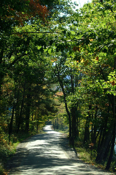 Picture of Country Road, Taftsville, Vermont - Free Pictures - FreeFoto.com