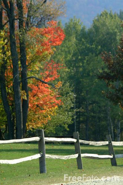 Picture of Fall Color, Plymouth Notch, Vermont - Free Pictures - FreeFoto.com