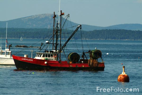 Kennebunkport Maine Boat Tours