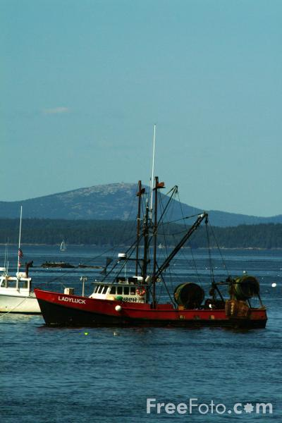 Picture of Lobster Boat, Bar Harbor, Maine, USA - Free Pictures - FreeFoto.com