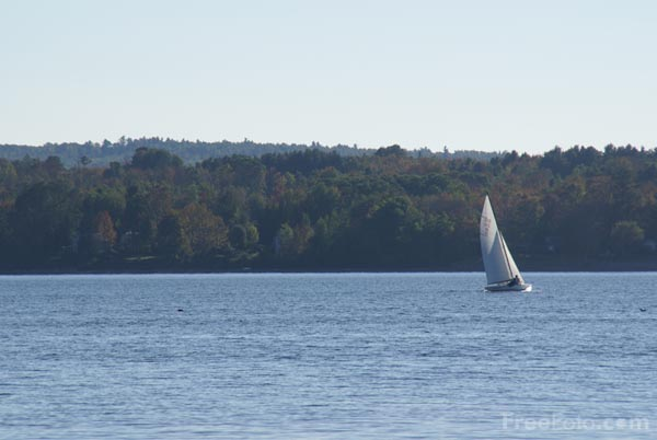 Picture of Sailing, Belfast Bay, Maine, USA - Free Pictures - FreeFoto.com