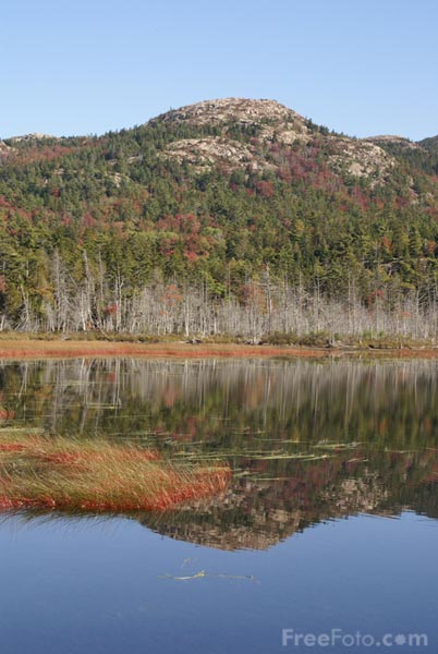 Picture of Acadia National Park, Maine, USA - Free Pictures - FreeFoto.com