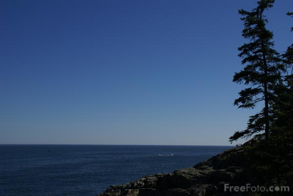 Picture of Coastline, Acadia National Park, Maine, USA - Free Pictures - FreeFoto.com