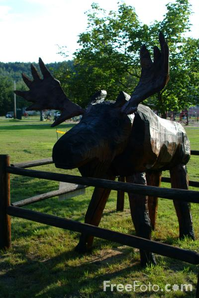 Picture of big wooden moose, Gorham, New Hampshire, USA - Free Pictures - FreeFoto.com