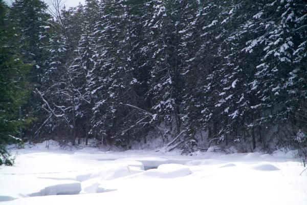 Picture of Swift River,  New Hampshire, USA, in the snow - Free Pictures - FreeFoto.com