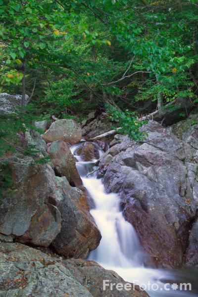 Picture of Glen Ellis Falls, Pinkham Notch, New Hampshire, USA - Free Pictures - FreeFoto.com