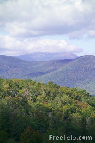 Picture of White Mountain National Forest, Bear Notch Road, New Hampshire, USA - Free Pictures - FreeFoto.com