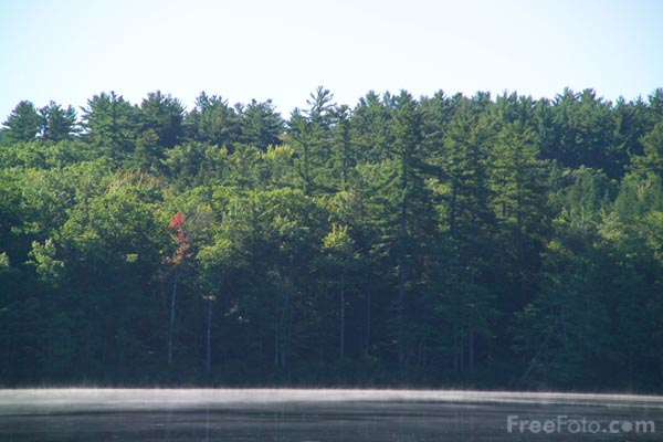 Picture of Chocorua Lake, New Hampshire, USA - Free Pictures - FreeFoto.com