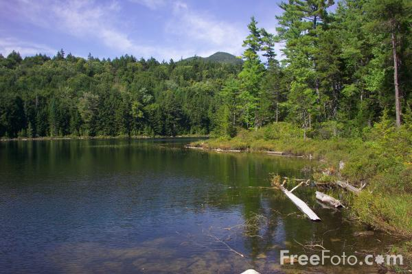 Picture of Falls Pond, Kancamagus Highway, New Hampshire, USA - Free Pictures - FreeFoto.com