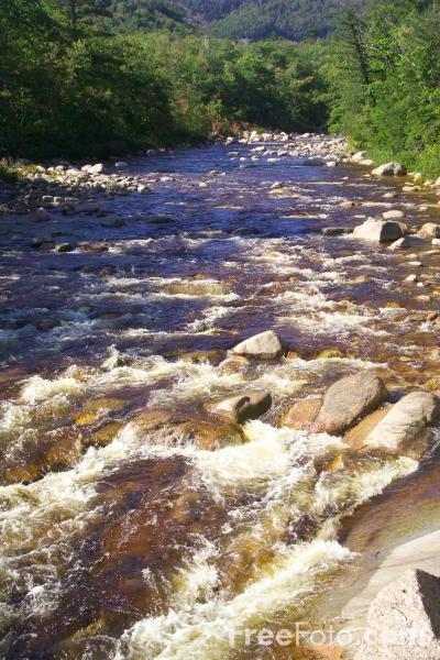 Picture of Swift River,  New Hampshire, USA - Free Pictures - FreeFoto.com