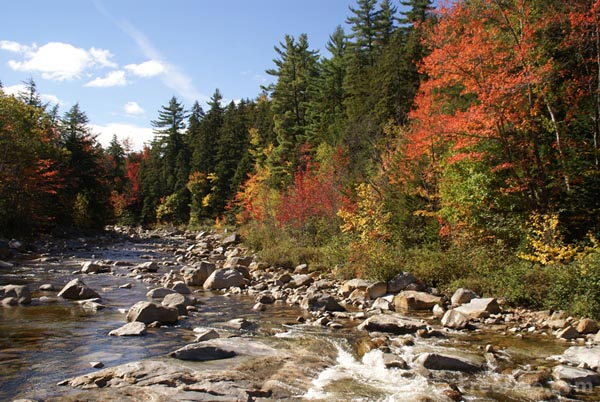 Swift River New Hampshire Usa Pictures Free Use Image