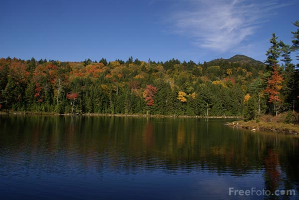 Picture of Falls Pond, White Mountain National Forest, New Hampshire, USA - Free Pictures - FreeFoto.com
