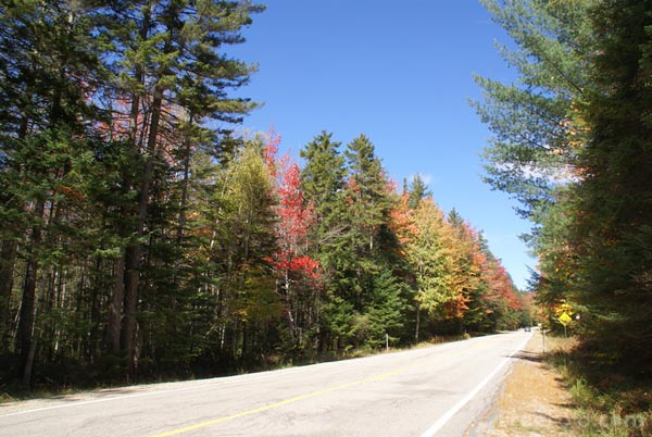 Picture of Bear Notch Road, New Hampshire, USA - Free Pictures - FreeFoto.com