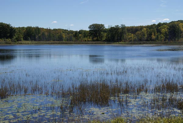 Picture of Lake, Minnesota, USA - Free Pictures - FreeFoto.com