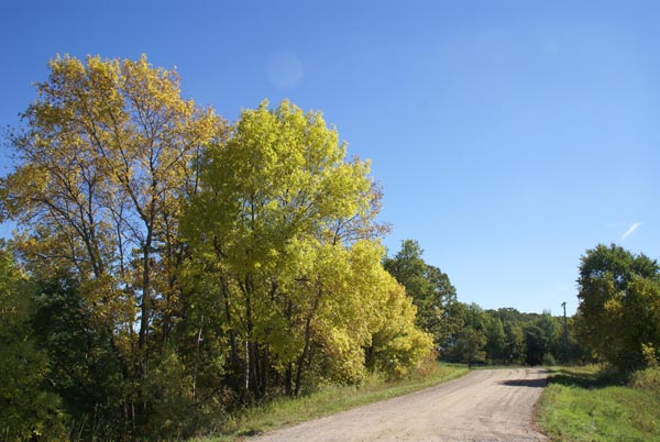 Picture of Country Road, Minnesota, USA - Free Pictures - FreeFoto.com