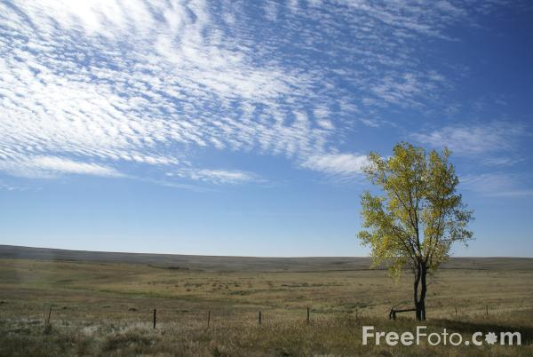 Fall Color, Great Plains, Montana, USA pictures, free use ...
