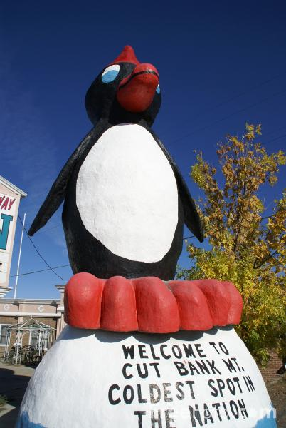 Picture of Penguin Statue, Cut Bank, Montana, USA - Free Pictures - FreeFoto.com