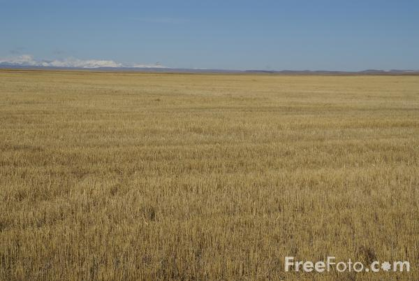 Picture of Big Blue Sky, Montana, USA - Free Pictures - FreeFoto.com