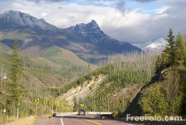 Picture of Glacier National Park, Montana, USA - Free Pictures - FreeFoto.com