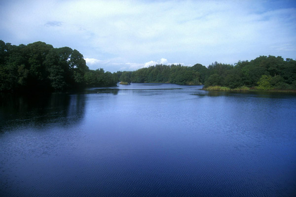 Picture of Galloway hydro electric scheme - Free Pictures - FreeFoto.com
