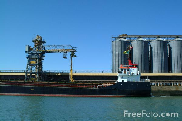 Picture of Hod Falcon, Port of Southampton - Free Pictures - FreeFoto.com