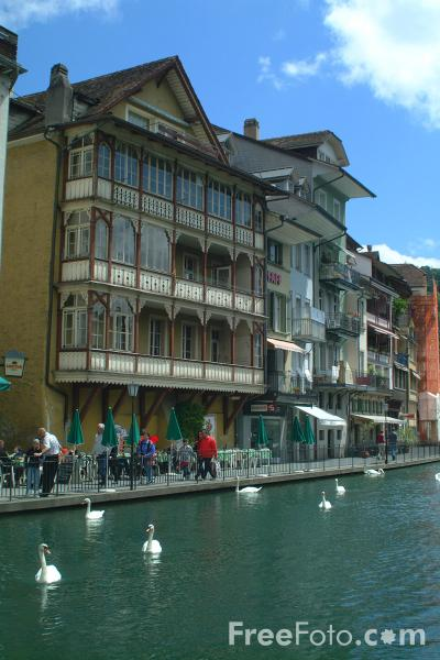 Picture of Thun, Berner Oberland, Switzerland - Free Pictures - FreeFoto.com