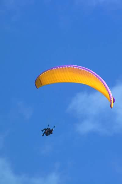 Picture of Paragliding, Interlaken, Berner Oberland, Switzerland - Free Pictures - FreeFoto.com